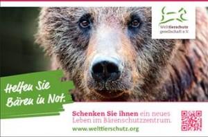Freianzeige_Bären