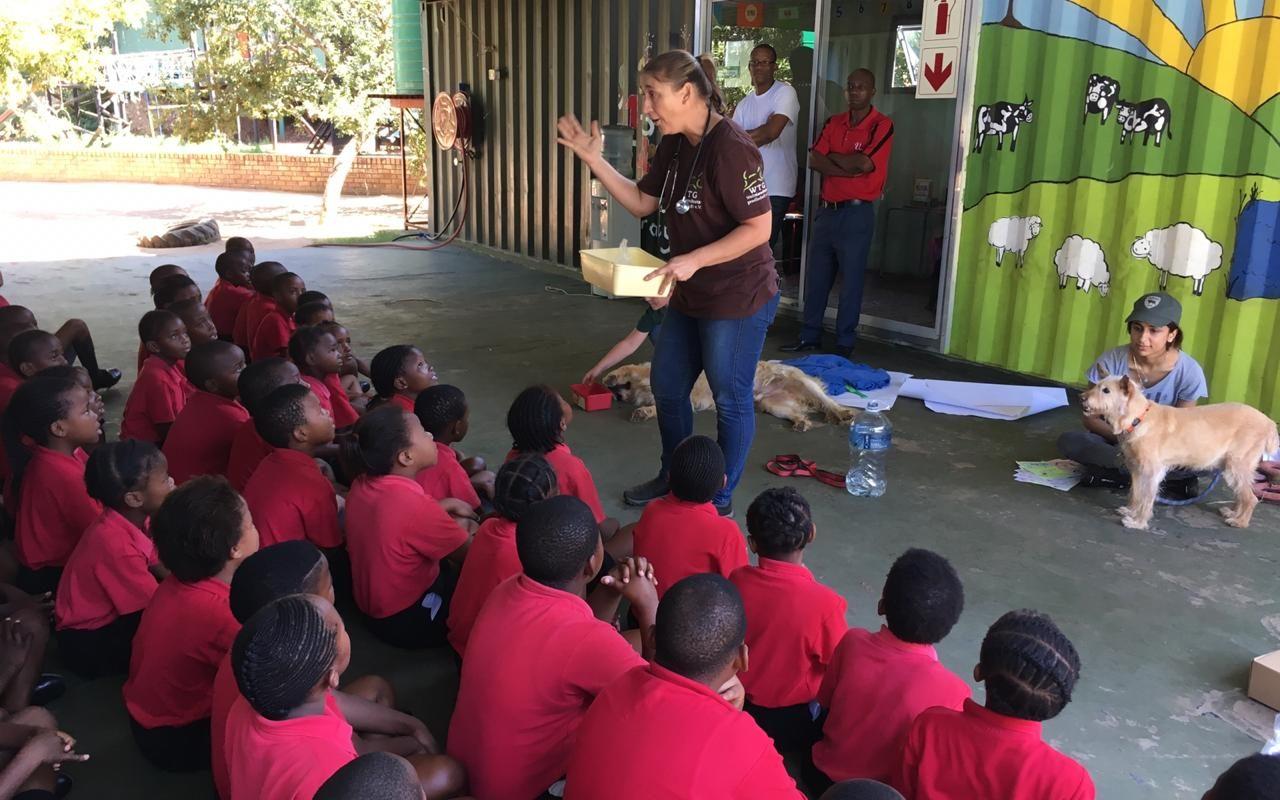 Streuner in Südafrika: Die Tierschützer von Morgen begeistern