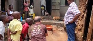 tieraerzte-weltweit-uganda-afrika-tierhilfe-tierschutz-960x430
