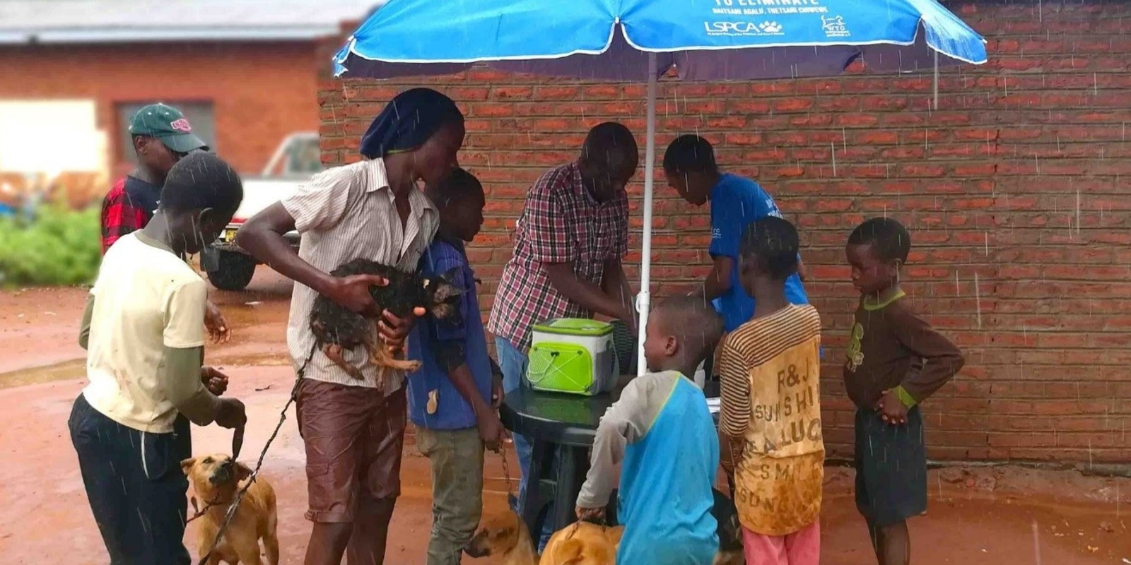 Anti-Tollwut-Teams in Malawi