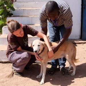 2-wendy-philipps-student-afrika-hund-tierschutz-325x325-1