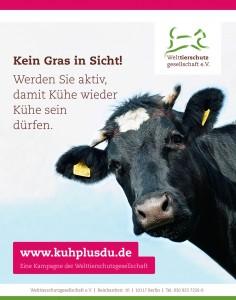 K+D-Anzeige-Schule-Kein-Gras-in-Sicht
