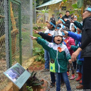 kinder-lernen-tierschutz-vietnam-schutzzentrum-325x325