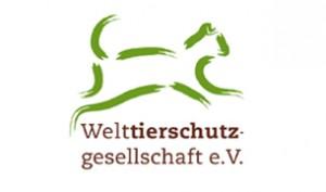 logo-wtg-ne