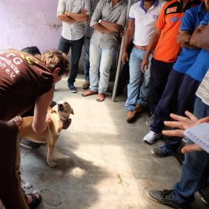 sybille-deuker-mit-hund-tierärzte-weltweit-sri-lanka-325x325