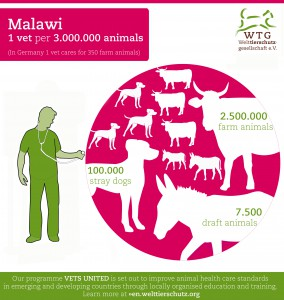 TW Malawi-Infografik