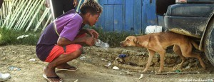 ecuador-erdbeben-tierschutz-hund-650x250
