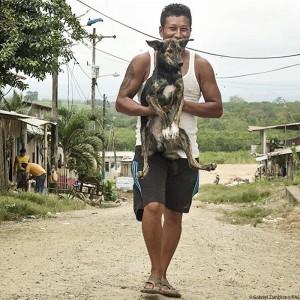 ecuador-erdbeben-tierschutz-mann-mit-hund-auf-arm