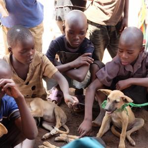 kinder-malawi-hund-afrika