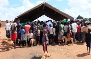 mobile-klinik-malawi-tierschutz-hunde-afrika