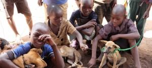 tierärzte-weltweit-malawi-kinder-welpen-slider_960x430