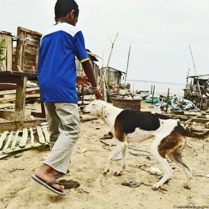 ecuador-erdbeben-tierschutz-kind-mit-hund