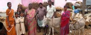 esel-indien-familie-arbeitstier-650x250