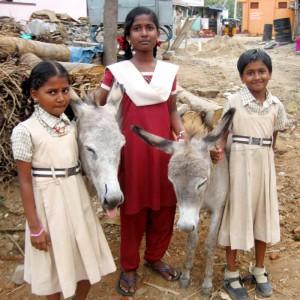 indien-mädchen-mit-esel-325x325