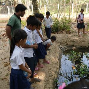 kambodscha-tierschutz-bildung-wildtiere