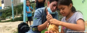 katastrophenhilfe-erdbeben-ecuador-hund-tierschutz