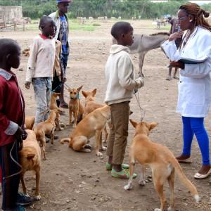 tierschutz-tansania-hunde-streuner-tierarzt-325x325