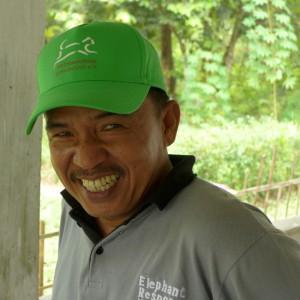 sumatra-elefanten-mahout