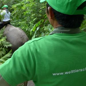 sumatra-elefanten-patrouille-welttierschutzgesellschaft
