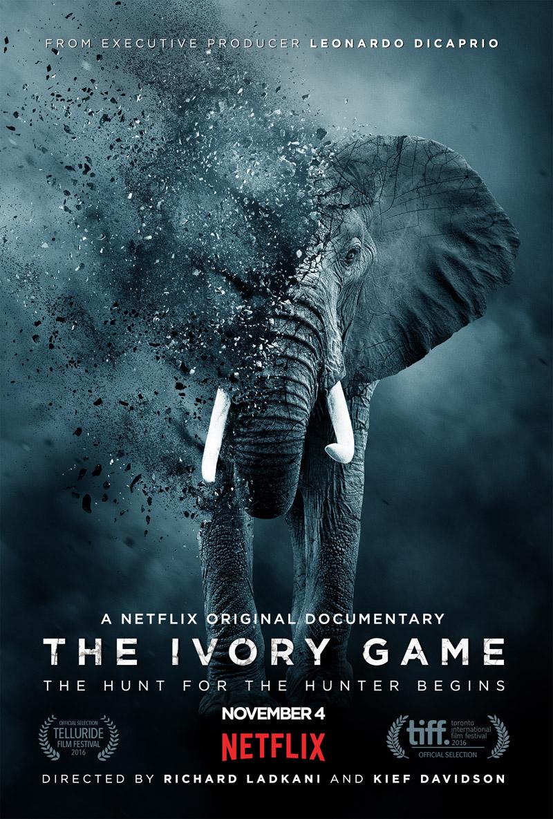 Die besten Tierschutzfilme - Welttierschutzgesellschaft e V