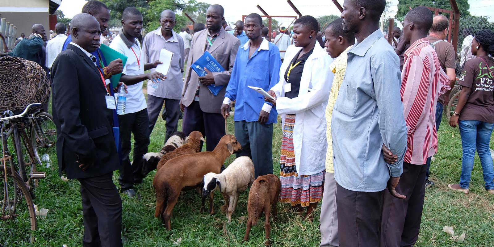 Paravets erhalten Weiterbildung im Bereich Tierschutz