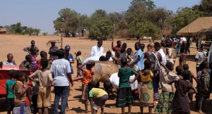 12_vets-united-lspca-mobile-clinic-malawi-1