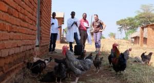 1_vets-united-tieraerzte-weltweit-students-chickens-farm-1