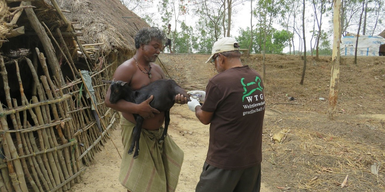 Tethered animals must be provided with food, water, shelter and regular, daily exercise off the tether