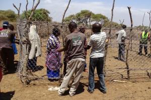 esel-tansania-soforthilfe-tierschutz-welttierschutzgesellschaft