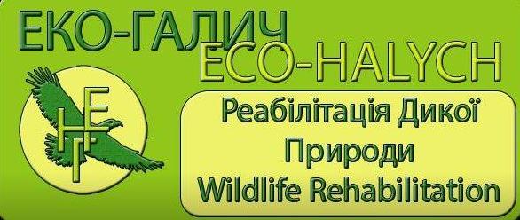ECO-HALYCH
