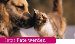 pate-werden