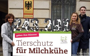 welttierschutzgesellschaft-petition-susanne-uhlen-milchkuh-650x400