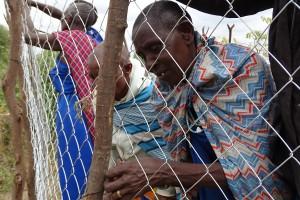 tierschutz-esel-tansania-eselhaut-soforthilfe-schutz-gehege-welttierschutzgesellschaft