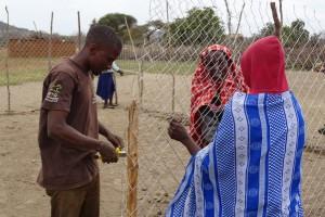 tierschutz-esel-tansania-eselhaut-soforthilfe-schutz-gehege-bau-welttierschutzgesellschaft