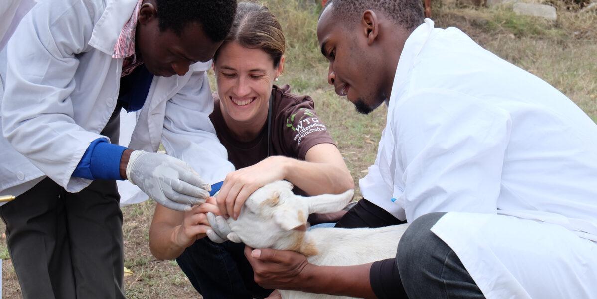 tierärzte-weltweit-tansania-welttierschutzgesellschaft-vets-united (7)