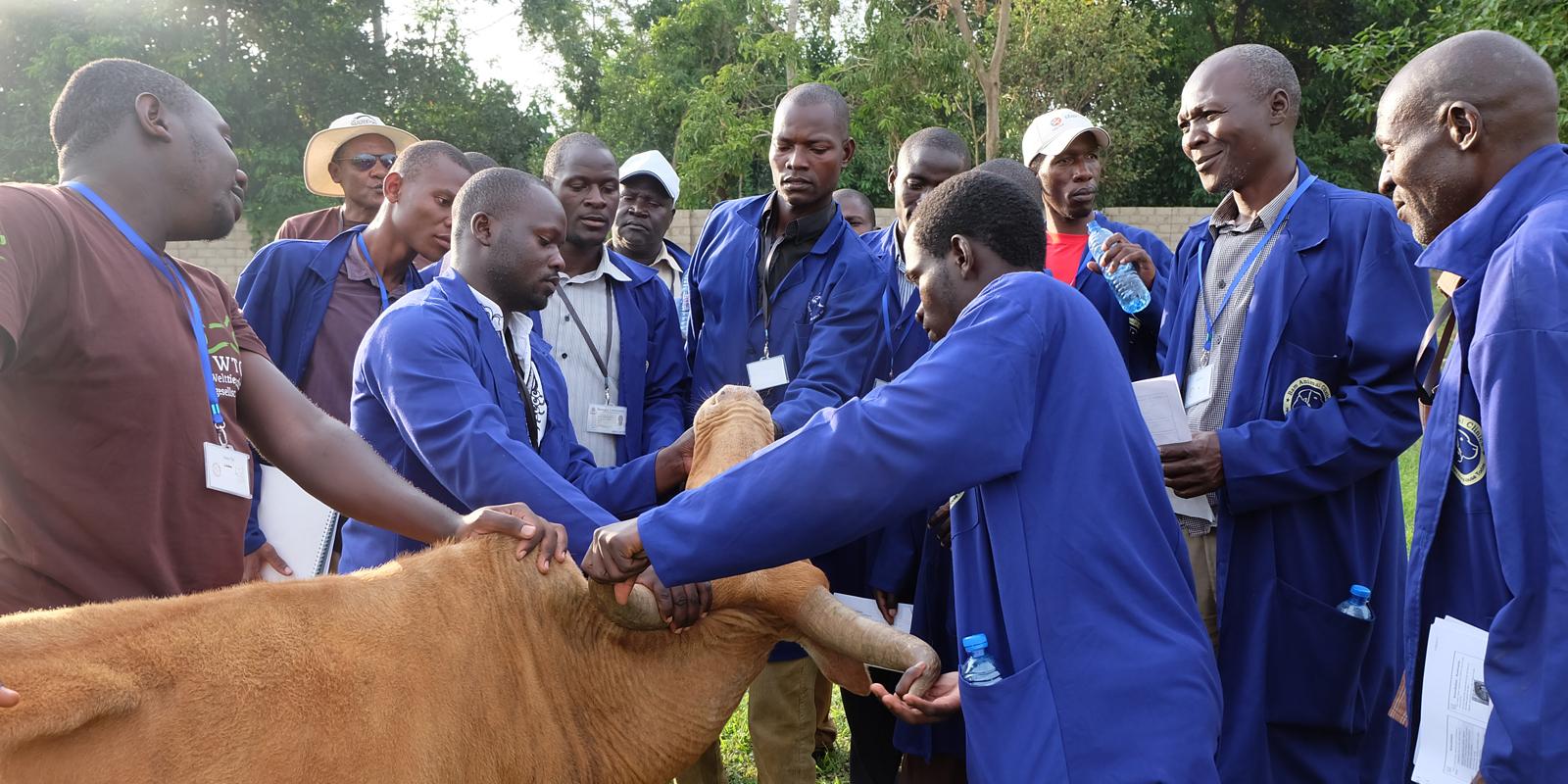 Aus- und Fortbildung in Uganda