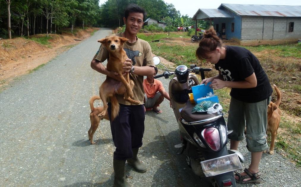 Tierschutz auf Borneo_Welttierschutzgesellschaft e.V.