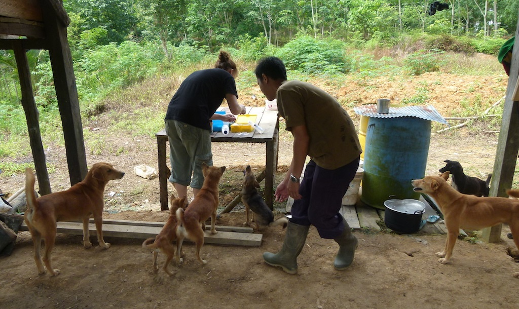 Mobile clinic on Borneo