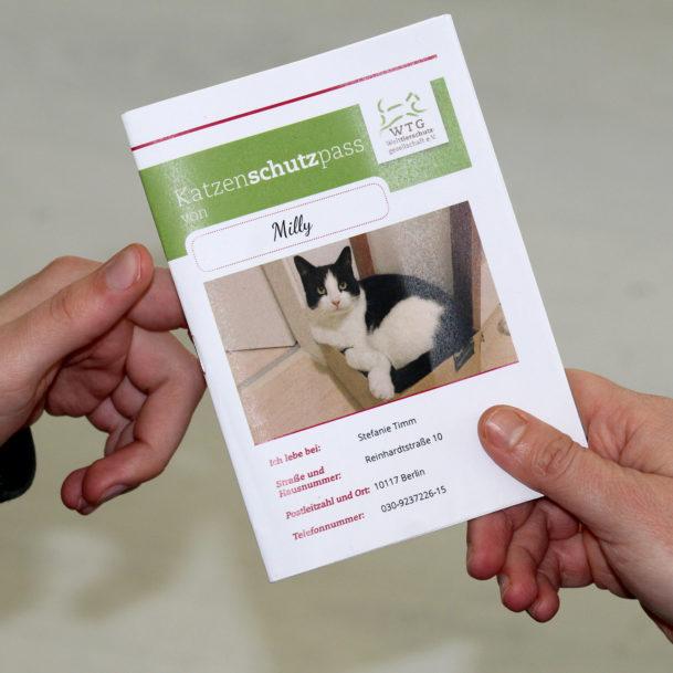 Übergabe des Katzenschutzpasses