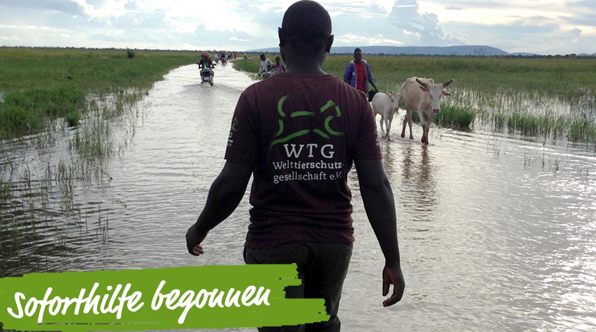 soforthilfe-tansania-regen-flut-tiere-tierschutz-welttierschutzgesellschaft