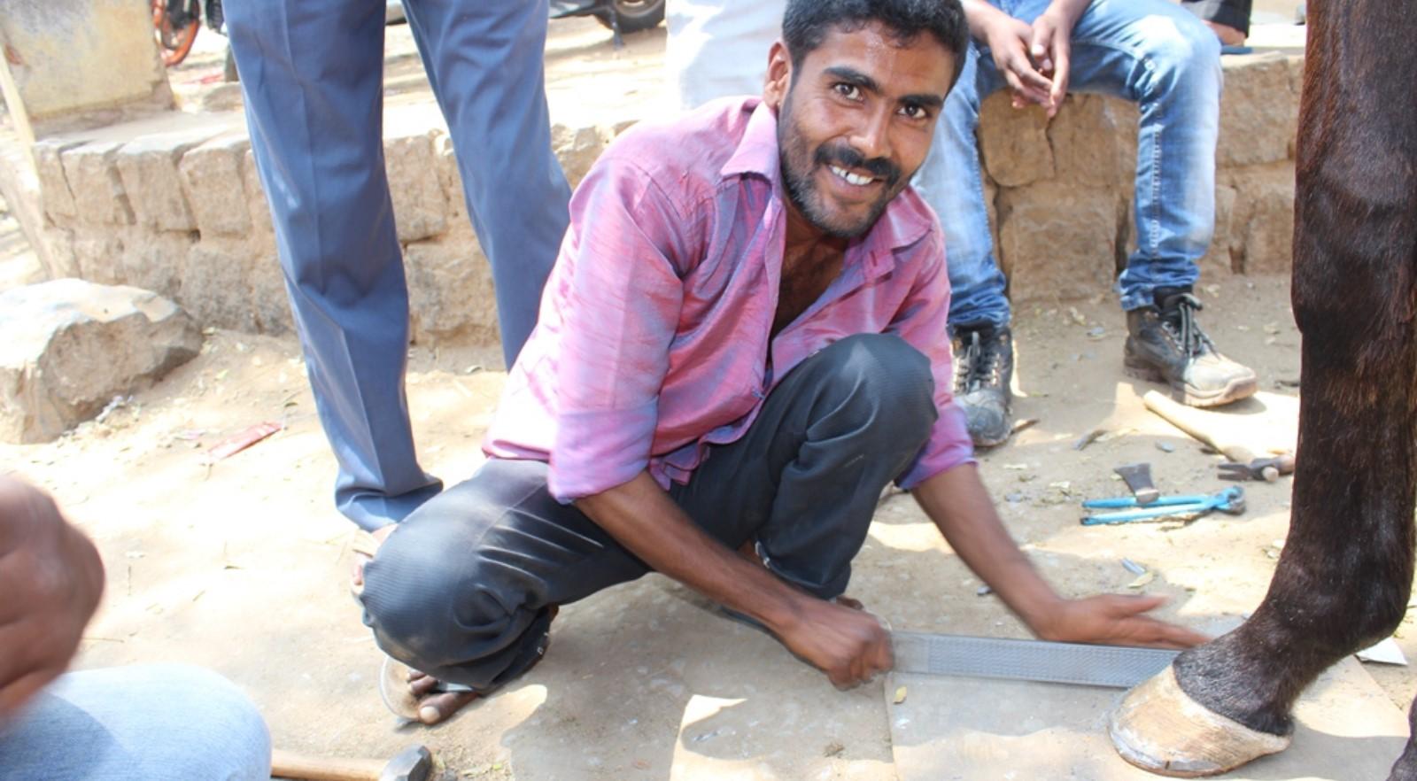 Streunende Pferde in SüdindienHufpflege