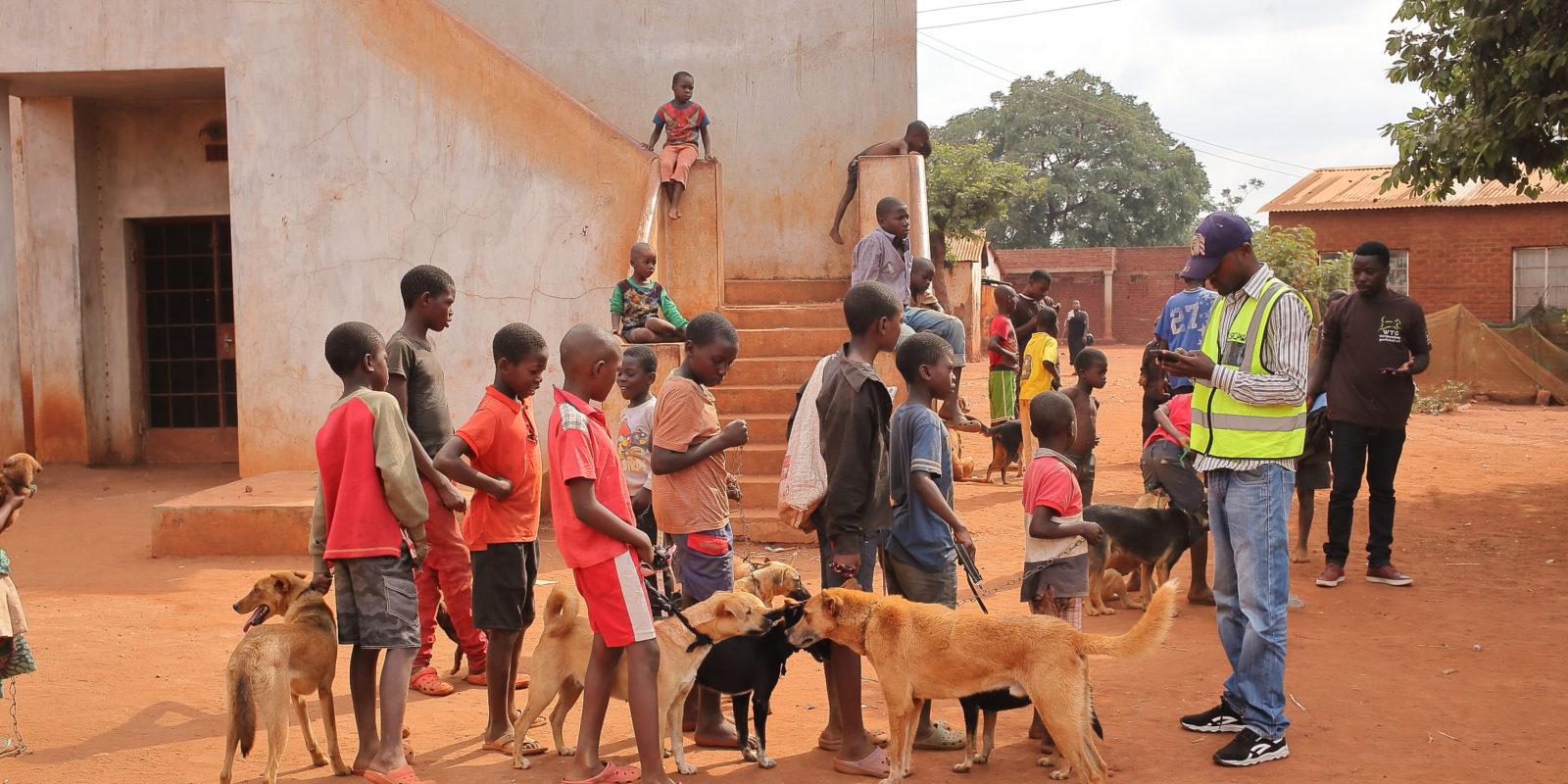 Kinder und Hunde stehen Schlange für's Impfen