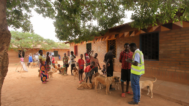 Menschen in Lilongwe stehen Schlange für Tollwutimpfungen ihrer Tiere