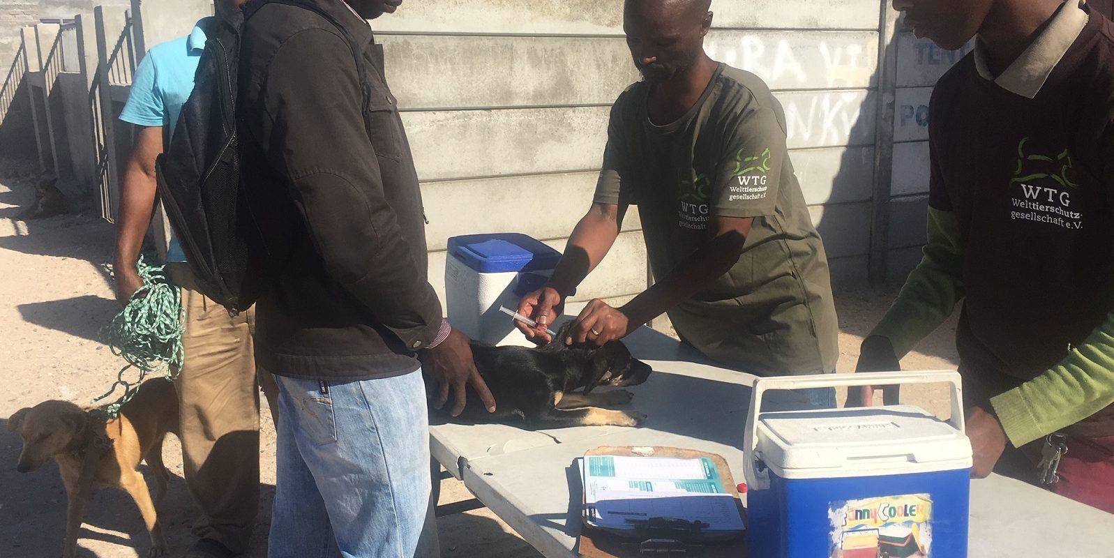 Mobile Haustierklinken in Südafrika: Entwurmungen, Impfungen, allgemeine Gesundheitschecks