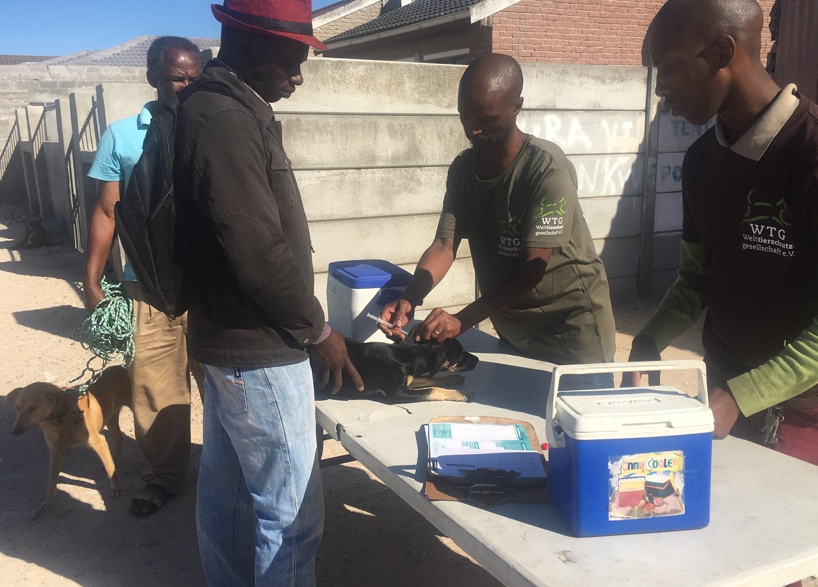 Entwurmungen und Impfungen werden von den Mitarbeitern der mobilen Haustierklinik ebenso durchgeführt wie allgemeine Gesundheitschecks