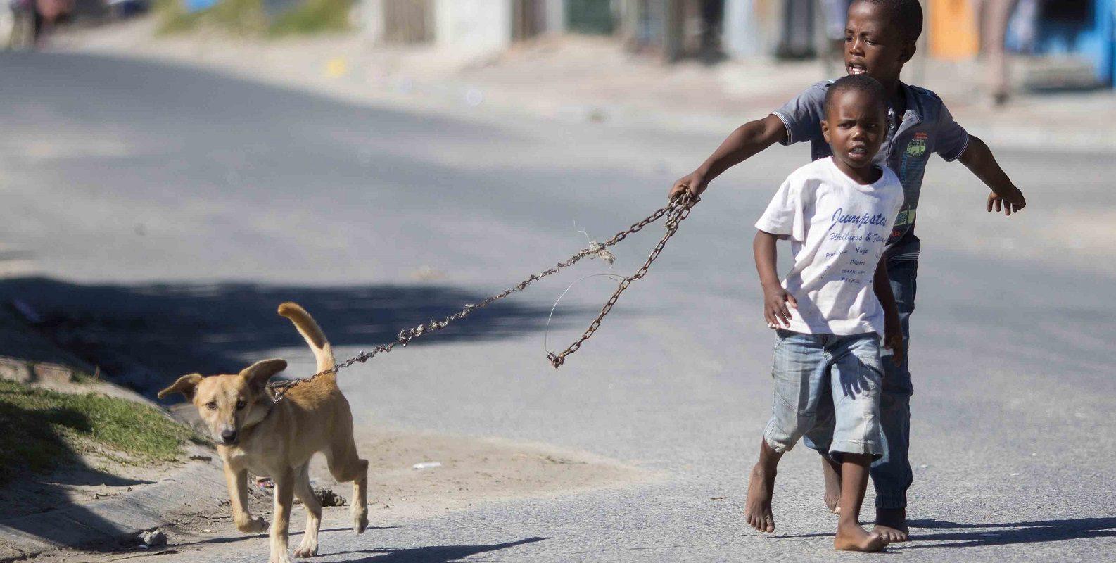 Mobile Haustierklinik in Südafrika: Kinder und Hund in Khayelitsha