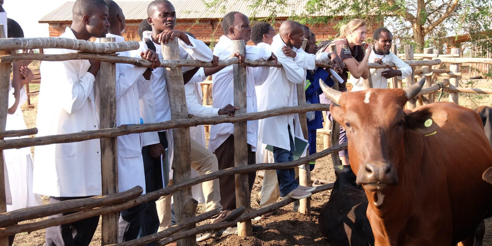 Kurs in Malawi