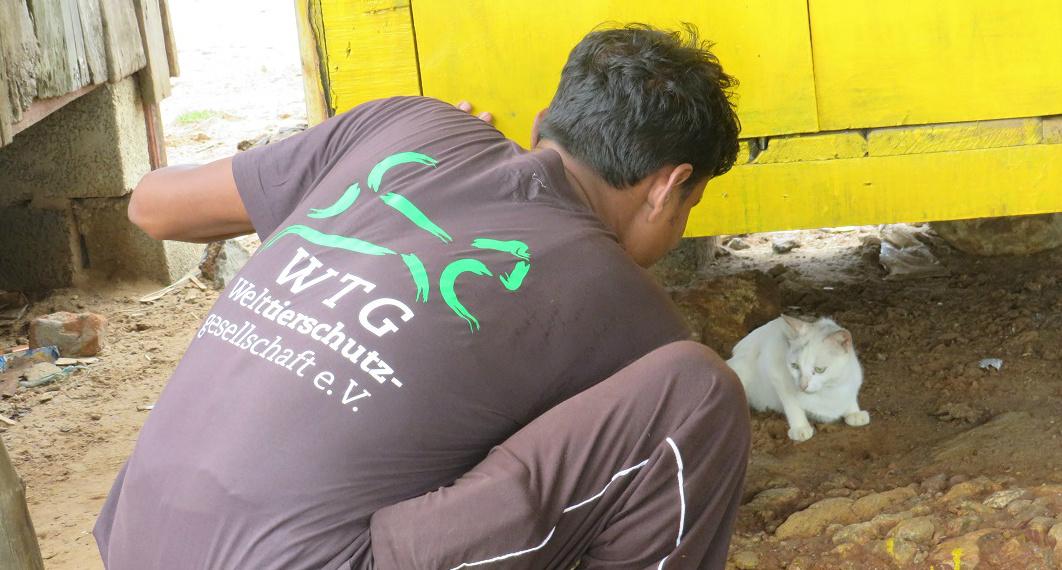 Auch Haustiere sind von den Folgen der Flut betroffen