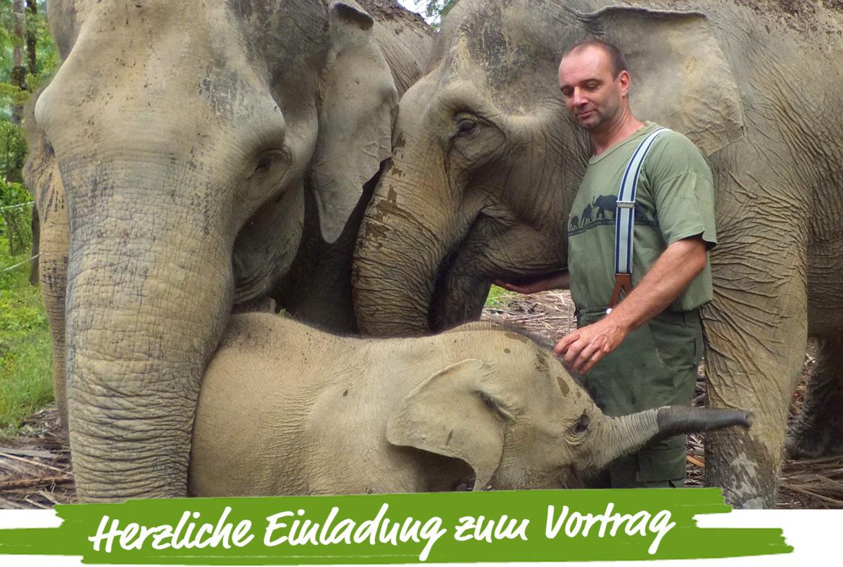 elefanten-tierschutznews-vortrag
