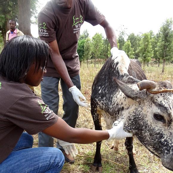 hilfe-tansania